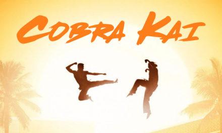 Cobra Kai (Karate Kid saga continues)